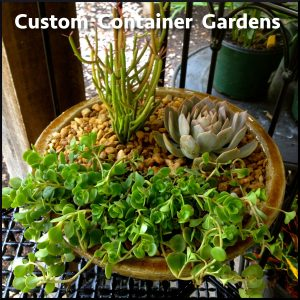 Container_Garden_Advert
