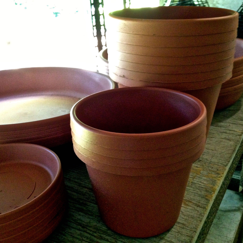Pottery Garden Gate Nursery Gainesville Fl