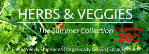 herbs_veggies_banner_summer